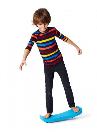 Placa de echilibru Roboboard1