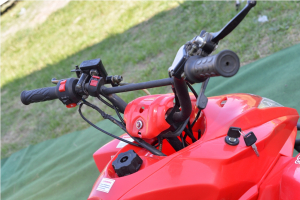 ATV  MODEL:JUMMPER 125CMC #AUTOMAT3
