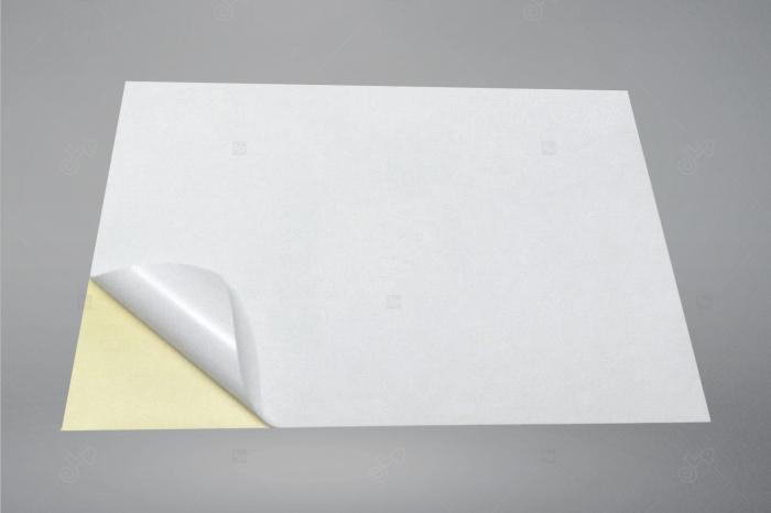Etichete autoadezive A4 dreptunghiulare, 210 x 297 mm, 1 eticheta / coala A4 autoadeziva, 100 coli autoadezive / top [4]