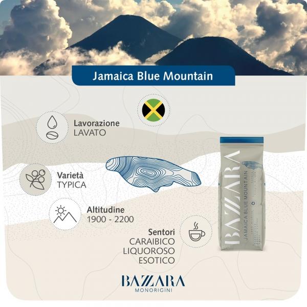 Cafea boabe Bazzara Jamaica Blue Mountain, 1 kg 1