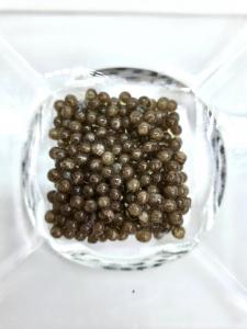 Caviar Beluga Gold3