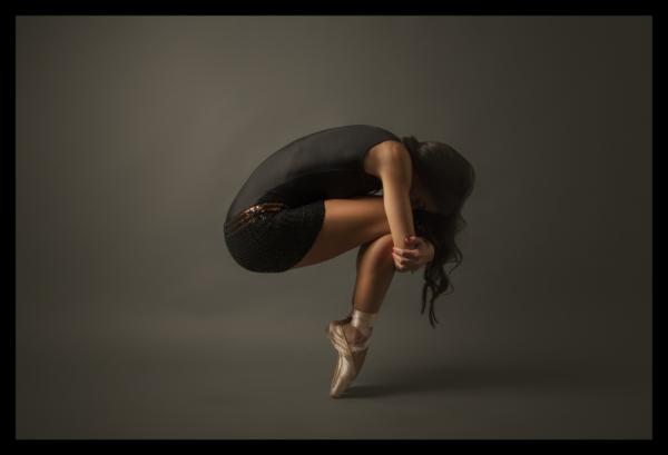 Tablou modern pe panou - ballet dancer 0