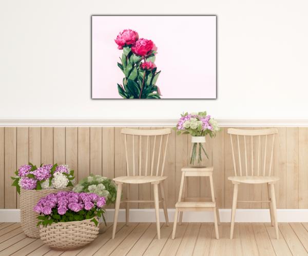 Tablou modern pe panou - pink peony 4