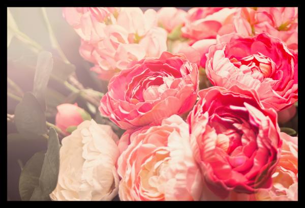 Tablou modern pe panou - blooming flowers 0