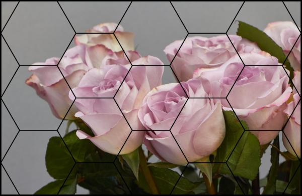 Tablou modern pe panou - bouquet blooming pink roses 5