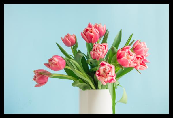 Tablou modern pe panou - bouquet red tulip vase 0