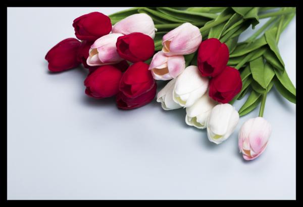 Tablou modern pe panou - bouquet tulips 0