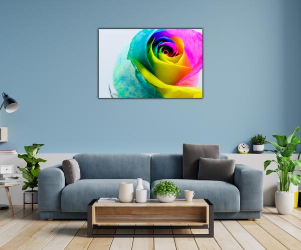 Tablou modern pe panou - multicolored rose 1