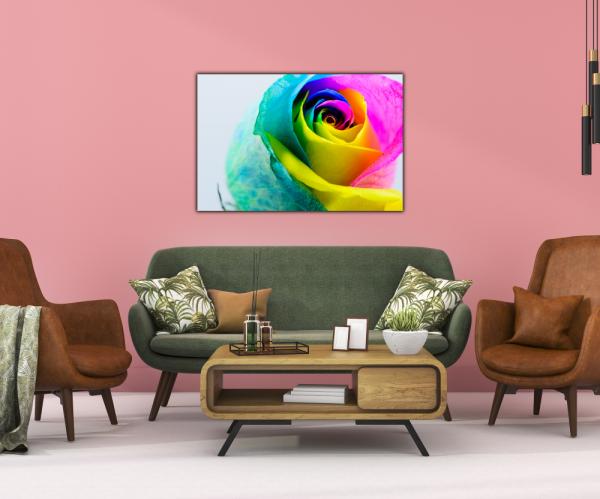 Tablou modern pe panou - multicolored rose 3