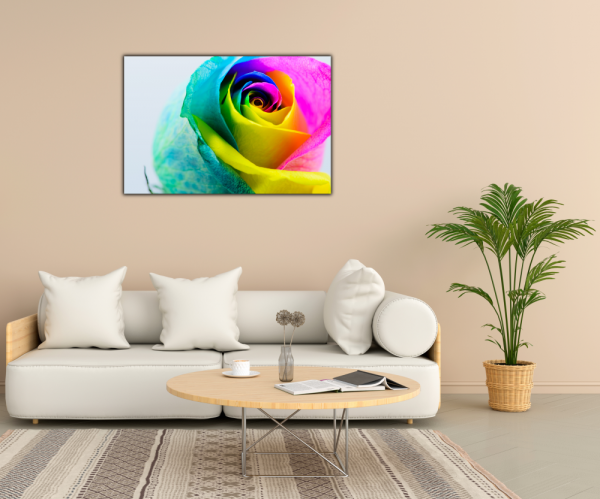 Tablou modern pe panou - multicolored rose 2
