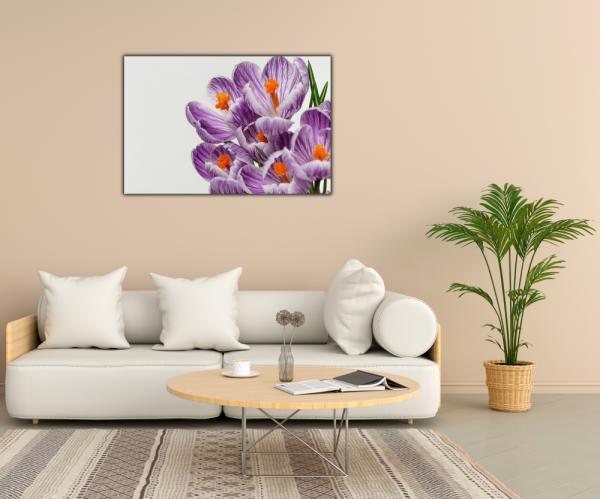 Tablou modern pe panou - beautiful crocuses flowers 2