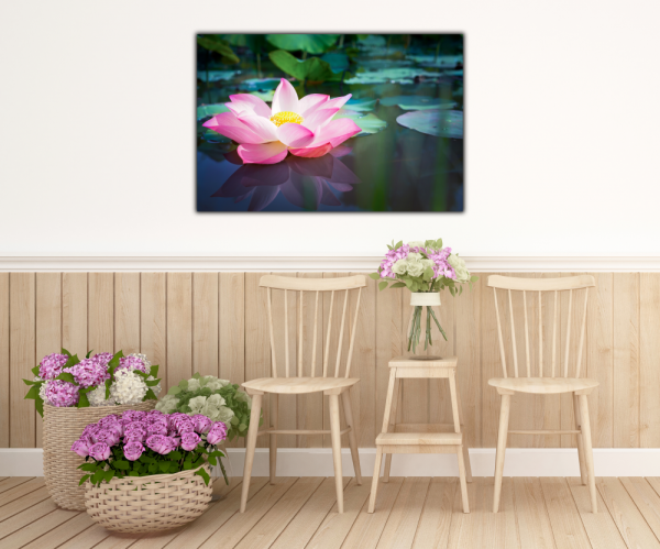 Tablou modern pe panou - pink lotus flower 3
