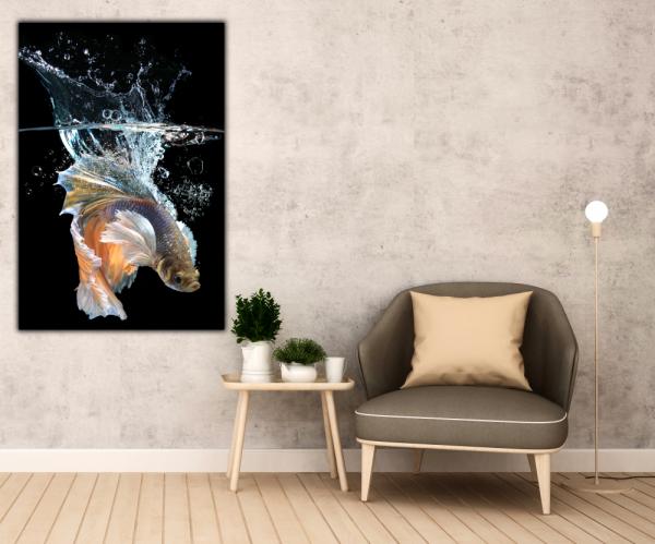 Tablou modern pe panou - fish splashes water 2