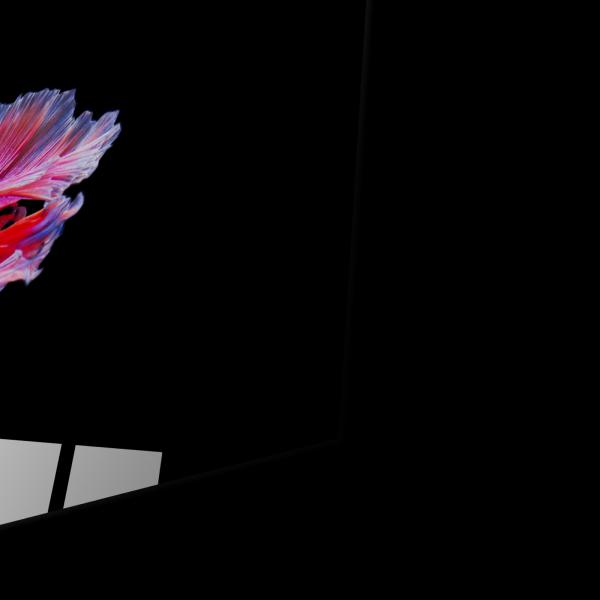 Tablou din sticla acrilica - betta fish 1