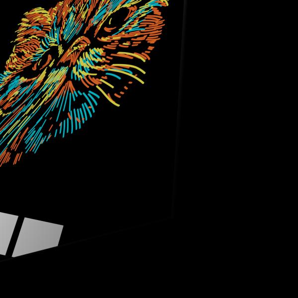 Tablou din sticla acrilica - colorful cat 1