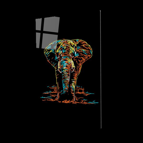 Tablou din sticla acrilica - Elefantul pigmentat [0]