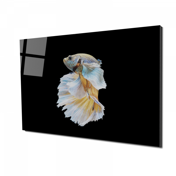 Tablou din sticla acrilica - fighting fish [0]