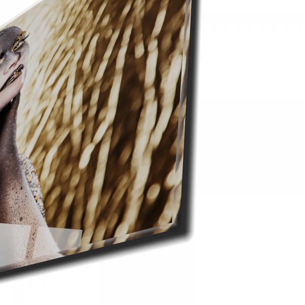 Tablou din sticla acrilica - painted women 1