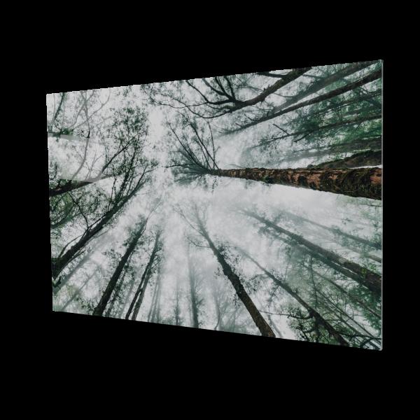 Tablou din sticla acrilica - Japanese forest 0