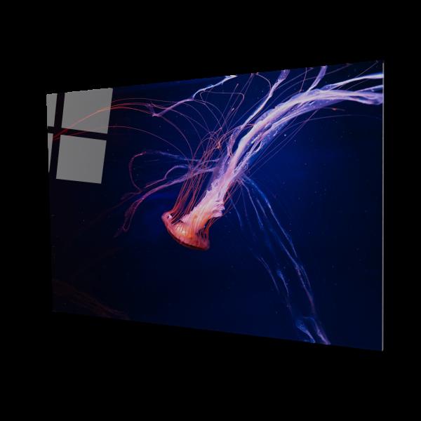 Tablou din sticla acrilica - Meduza [0]