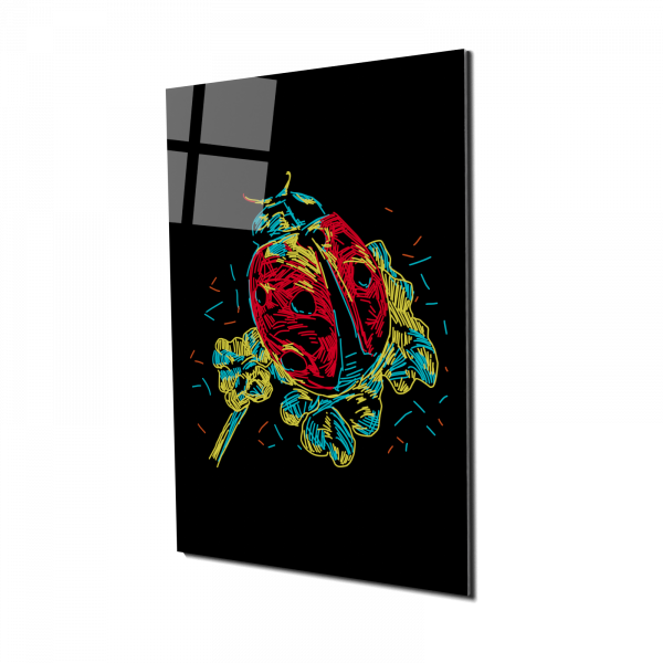 Tablou din sticla acrilica - colorful ladybug 0