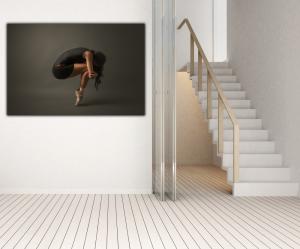 Tablou modern pe panou - ballet dancer2