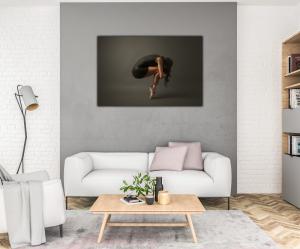 Tablou modern pe panou - ballet dancer1
