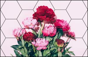 Tablou modern pe panou - pink peony flowers0