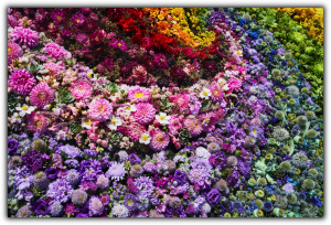Tablou modern pe panou - colorful flowers0