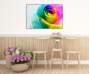 Tablou modern pe panou - multicolored rose4