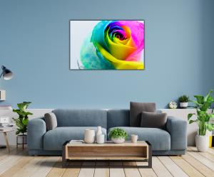 Tablou modern pe panou - multicolored rose1