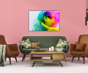 Tablou modern pe panou - multicolored rose3