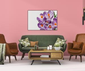 Tablou modern pe panou - beautiful crocuses flowers3