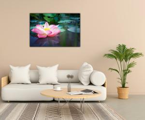 Tablou modern pe panou - pink lotus flower1