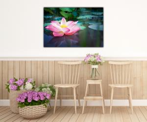 Tablou modern pe panou - pink lotus flower3