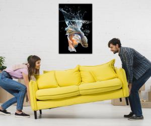 Tablou modern pe panou - fish splashes water4