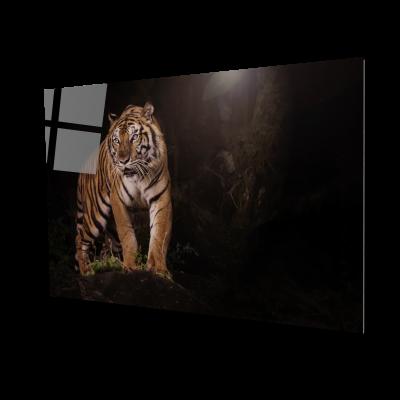 Tablou din sticla acrilica - bengal tiger0