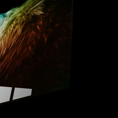Tablou din sticla acrilica - colored lion1
