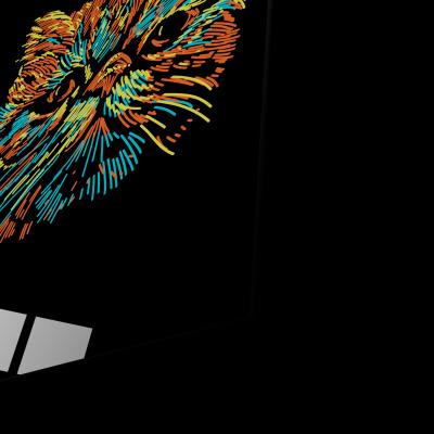 Tablou din sticla acrilica - colorful cat1