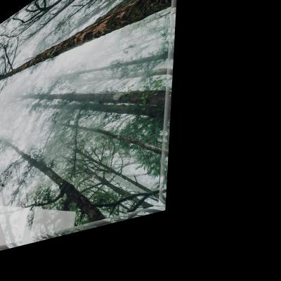 Tablou din sticla acrilica - Japanese forest1