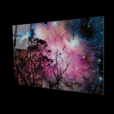 Tablou din sticla acrilica - sky tree0