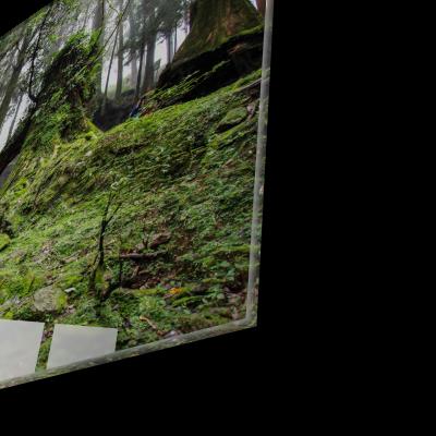 Tablou din sticla acrilica - walkway forest1