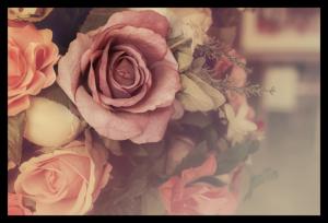 Tablou modern pe panou - colorful pink roses0