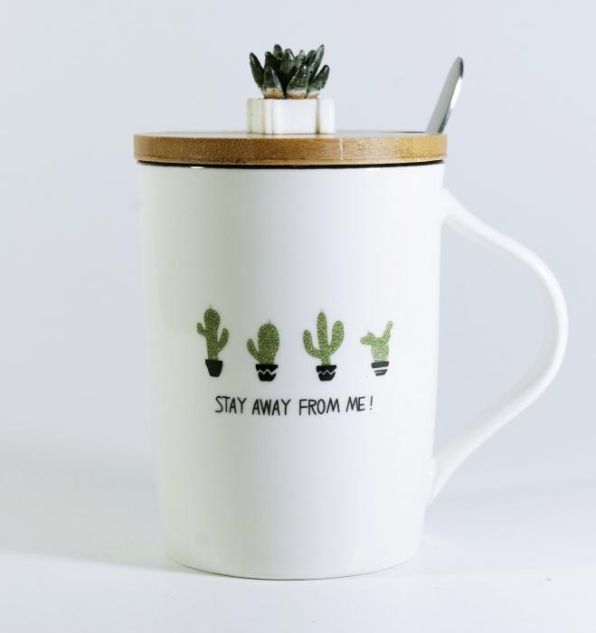 Cana cu lingurita si capac, model Cactus, 300ml 0