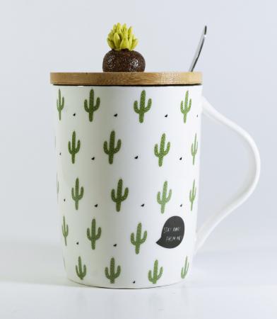 Cana cu lingurita si capac, model Cactus, 300ml0