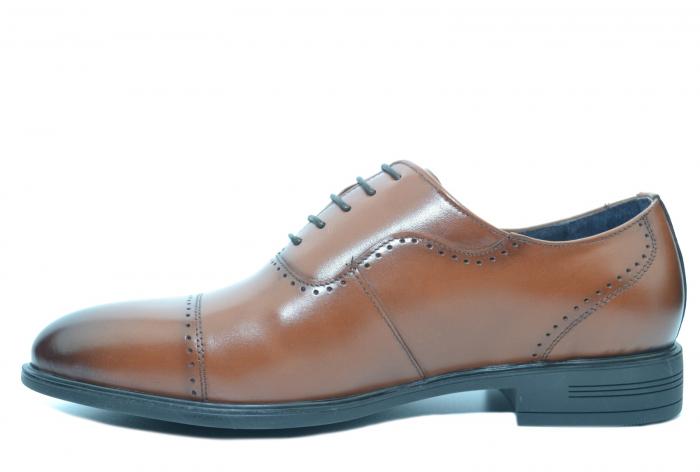 Pantofi Barbati Piele Naturala Maro Alexander B00052 1