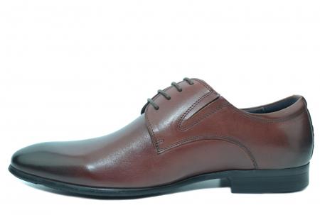 Pantofi Barbati Piele Naturala Grena Antonio B000531