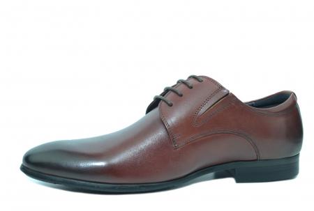 Pantofi Barbati Piele Naturala Grena Antonio B000532