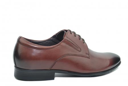 Pantofi Barbati Piele Naturala Grena Antonio B000533