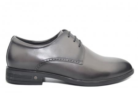 Pantofi Barbati Piele Naturala Gri Ernest B000480